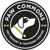 Paw Commons